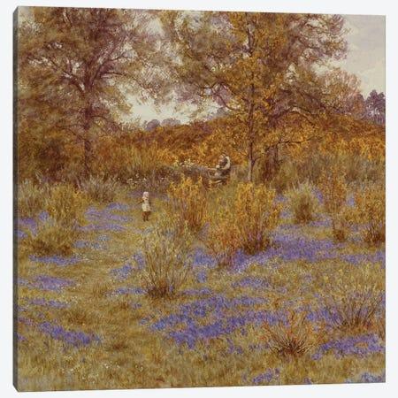 Bluebell Copse, 1889  Canvas Print #BMN5421} by Helen Allingham Art Print