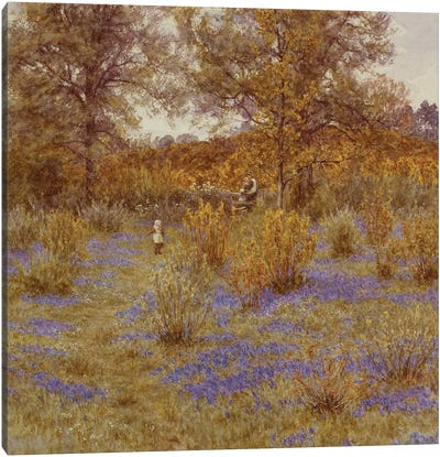 Bluebell Copse, 1889  Canvas Art Print