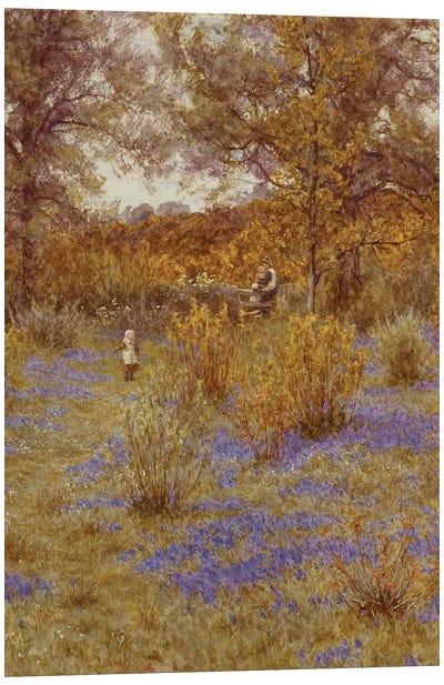 Bluebell Copse, 1889  Canvas Print #BMN5421