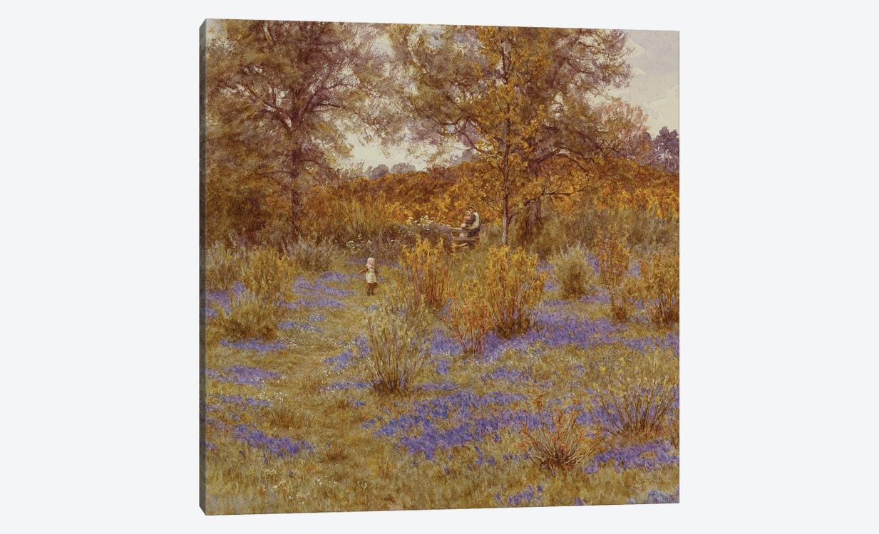 Bluebell Copse, 1889 by Helen Allingham 1-piece Canvas Print