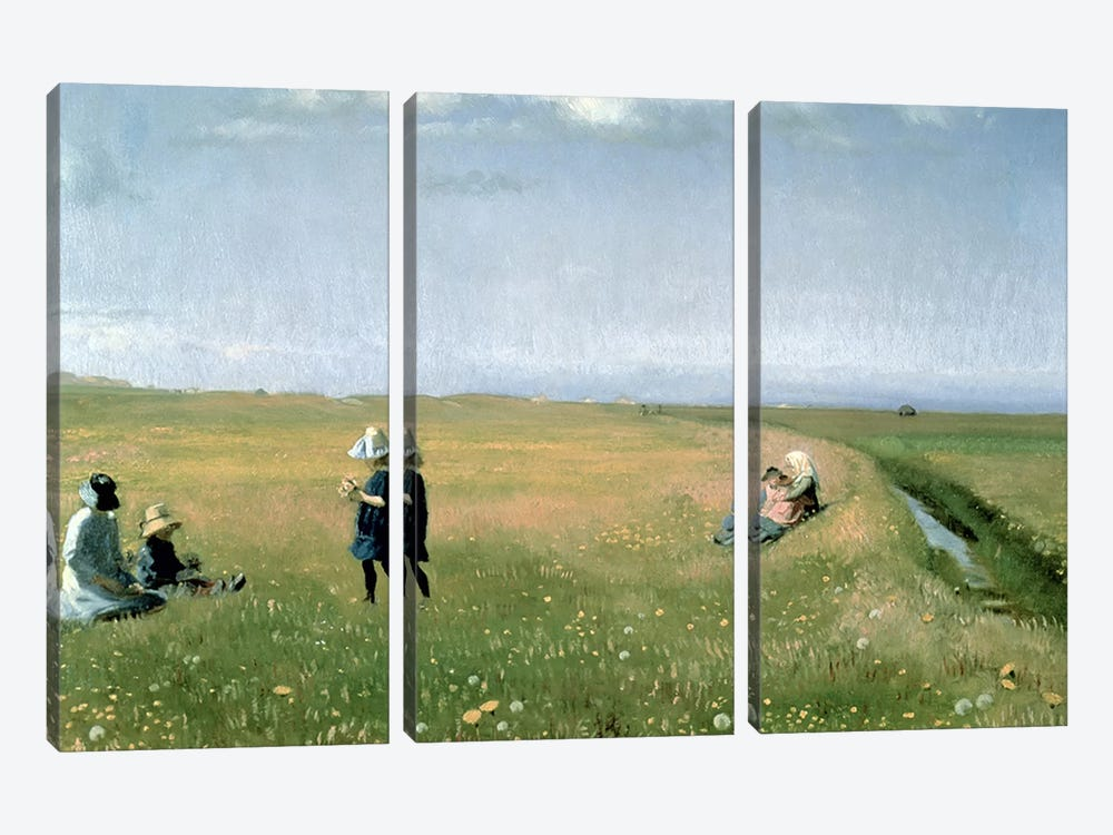 Children and Young Girls picking Flowers in a meadow north of Skagen by Michael Peter Ancher 3-piece Art Print