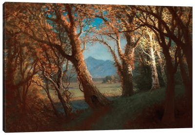 Sunset in the Nebraska Territory by Albert Bierstadt Art Print