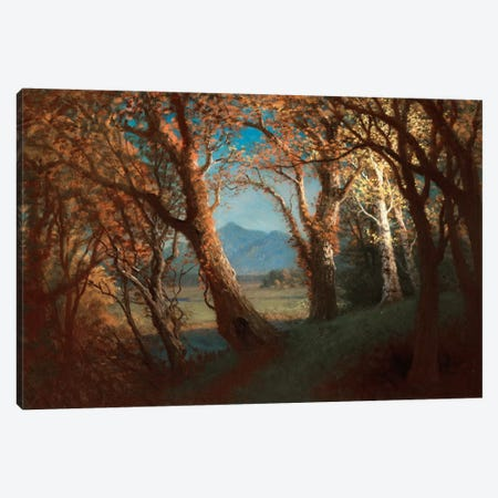 Sunset in the Nebraska Territory  Canvas Print #BMN5454} by Albert Bierstadt Art Print