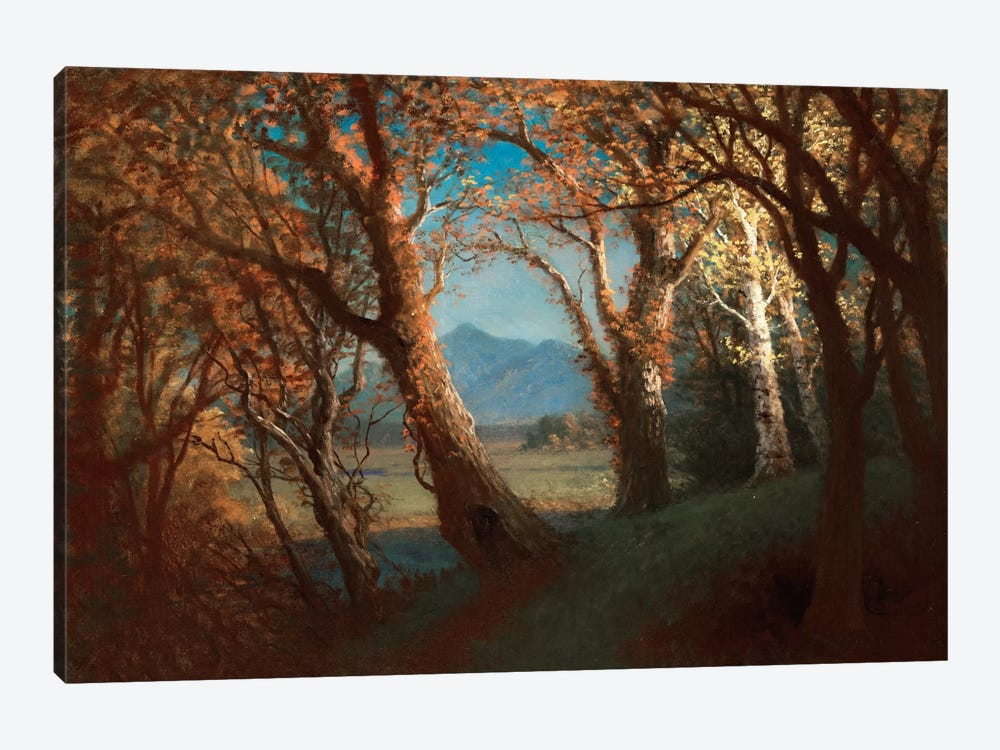 Sunset in the Nebraska Territory  by Albert Bierstadt 1-piece Art Print