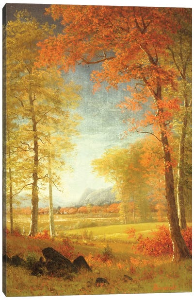 Autumn in America, Oneida County, New York  Canvas Art Print