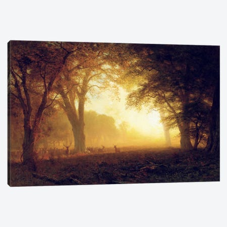 Golden Light of California  Canvas Print #BMN5456} by Albert Bierstadt Art Print