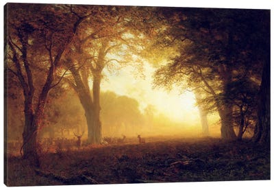 Golden Light of California by Albert Bierstadt Art Print