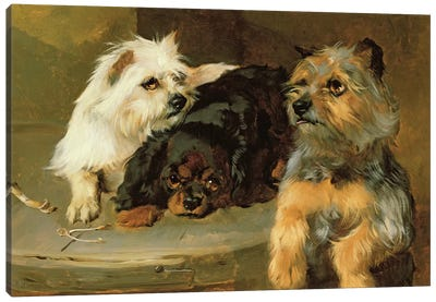 Give a Poor Dog a Bone Canvas Art Print