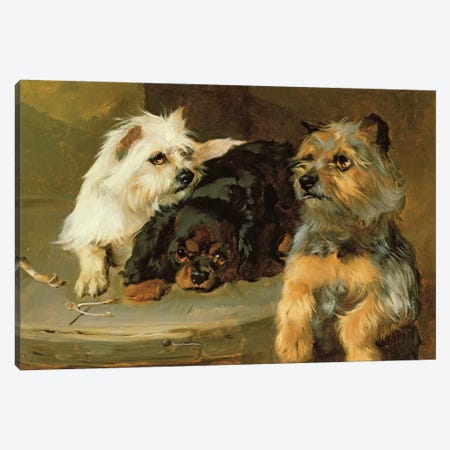 Give a Poor Dog a Bone 3-Piece Canvas #BMN545} by George Wiliam Horlor Canvas Art