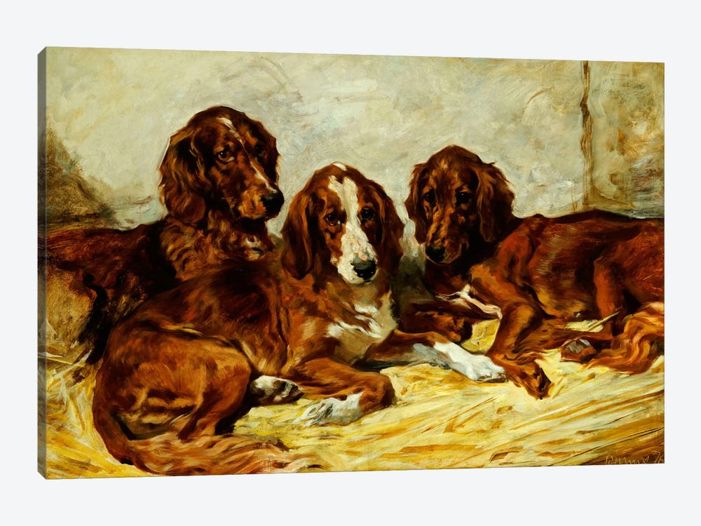 Shot and his Friends - Three Irish Red and White Setters, 1876  by John Emms 1-piece Canvas Print