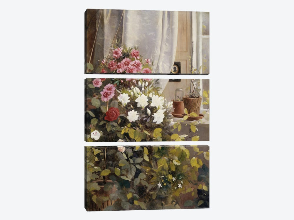 Azaleas, Geraniums, Roses and other Potted Plants by a Window, 1888  by Carl Christian Carlsen 3-piece Canvas Artwork