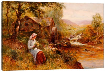 A Young Girl picking Spring Flowers  Canvas Art Print