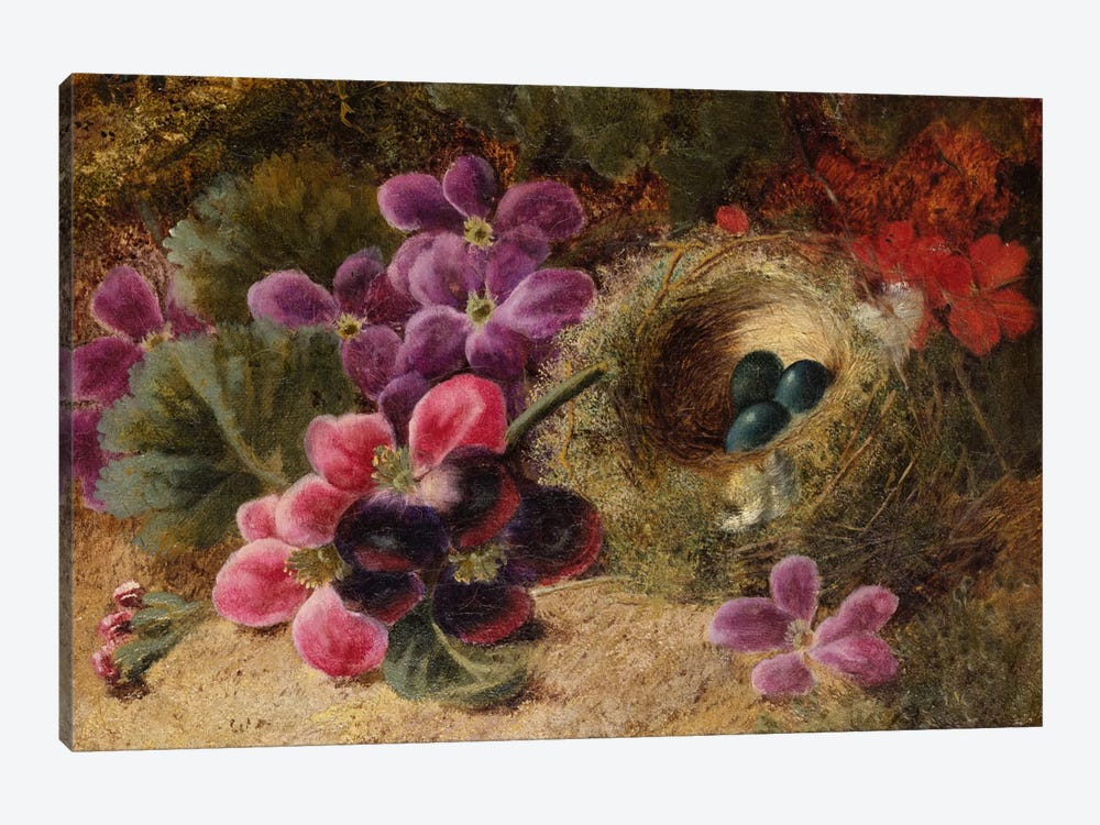 A Bird's Nest and Geraniums  by Oliver Clare 1-piece Canvas Artwork