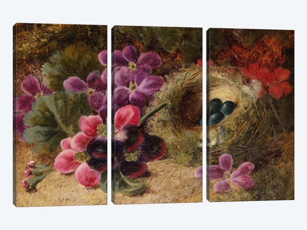 A Bird's Nest and Geraniums  by Oliver Clare 3-piece Canvas Wall Art