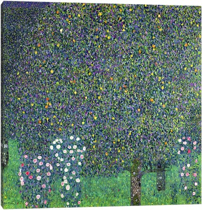 Roses under the Trees, c.1905  by Gustav Klimt Canvas Art Print