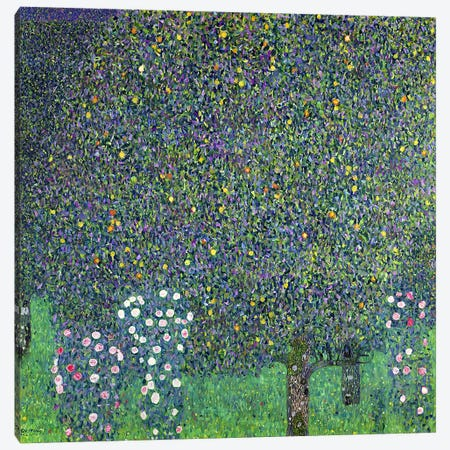 Roses under the Trees, c.1905  Canvas Print #BMN552} by Gustav Klimt Canvas Artwork
