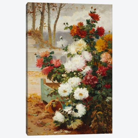Chrysanthemums in a Walled Garden  Canvas Print #BMN5537} by Eugene Henri Cauchois Canvas Art