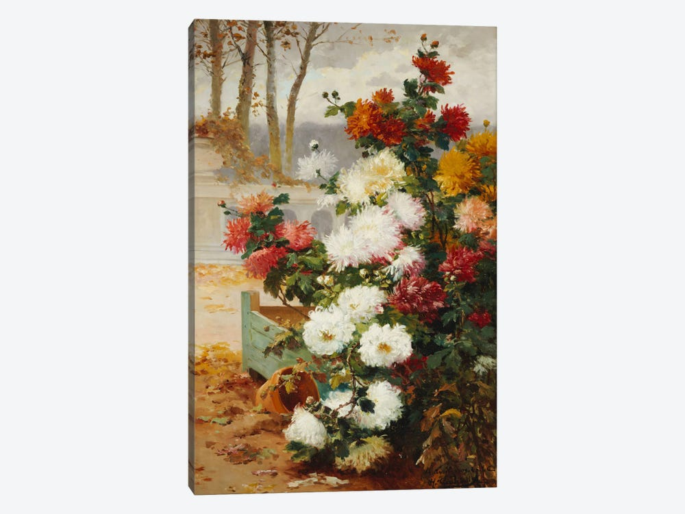 Chrysanthemums in a Walled Garden  by Eugene Henri Cauchois 1-piece Canvas Print