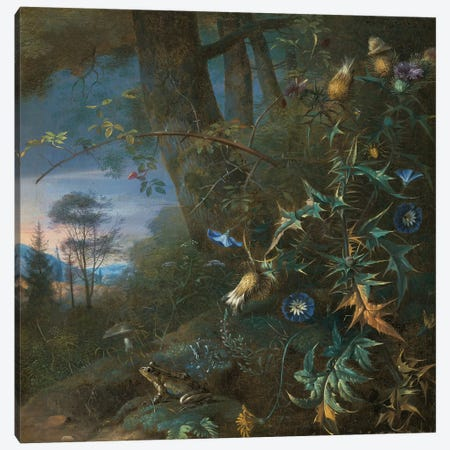 forest floor still life with a frog and a mushroom, mountains beyond  Canvas Print #BMN5566} by Matthias Withoos Canvas Print
