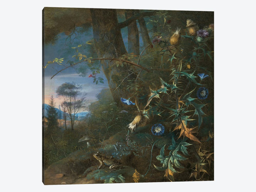 forest floor still life with a frog and a mushroom, mountains beyond  by Matthias Withoos 1-piece Canvas Art Print