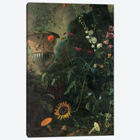 Hollyhocks, roses, a blue-lace flower, sunflower and toadstools, with marigolds in an urn by a tree  Canvas Print #BMN5568} by Matthias Withoos Canvas Wall Art