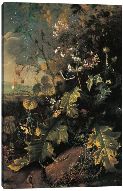Forest floor with butterflies and lizards  Canvas Art Print