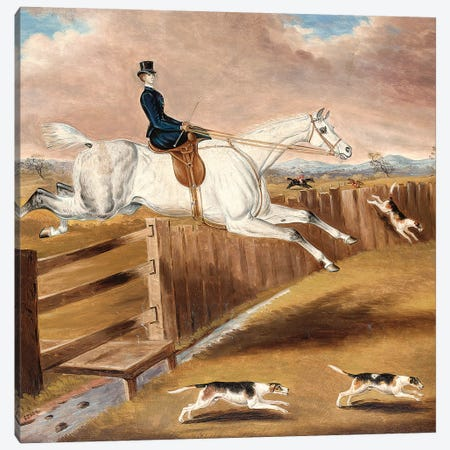 Over the Fence  Canvas Print #BMN5579} by Samuel Spode Canvas Print