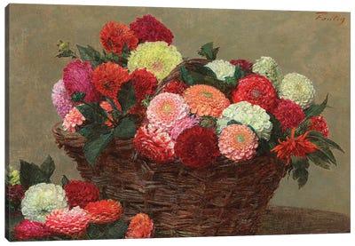 Basket of dahlias, 1893  Canvas Art Print