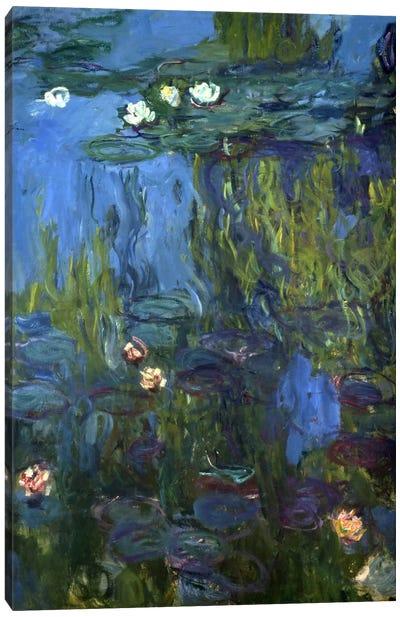 Nympheas, 1914-17  Canvas Art Print