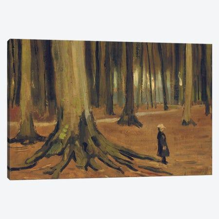 A Girl in a Wood, 1882  Canvas Print #BMN5617} by Vincent van Gogh Art Print