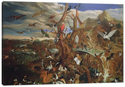 The Parliament of Birds Canvas Art Print