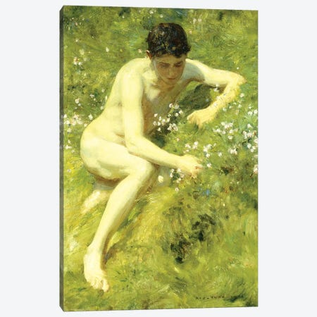 In the Meadow, 1906  Canvas Print #BMN5641} by Henry Scott Tuke Canvas Art Print