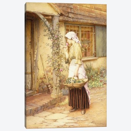 The Sweetest Rose  Canvas Print #BMN5673} by Charles Edward Wilson Canvas Art