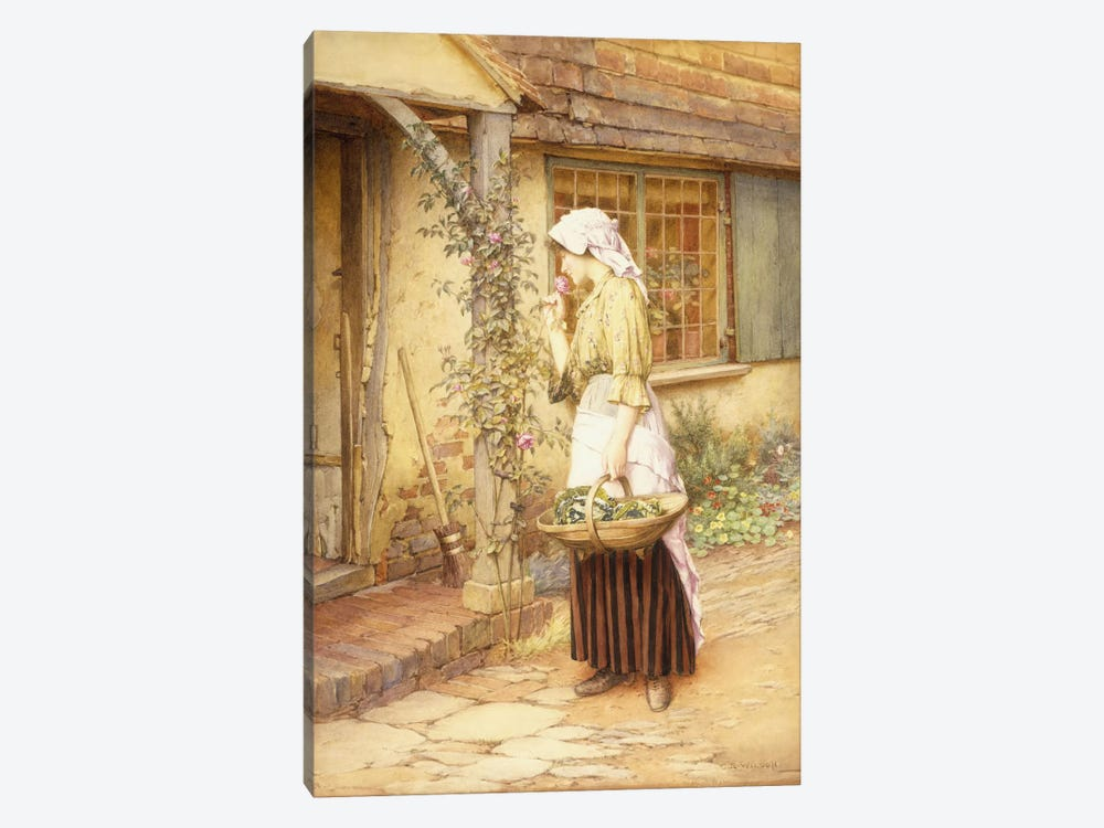 The Sweetest Rose  by Charles Edward Wilson 1-piece Canvas Art Print