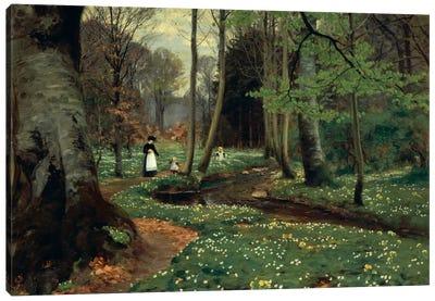 The Woodland Path  Canvas Art Print