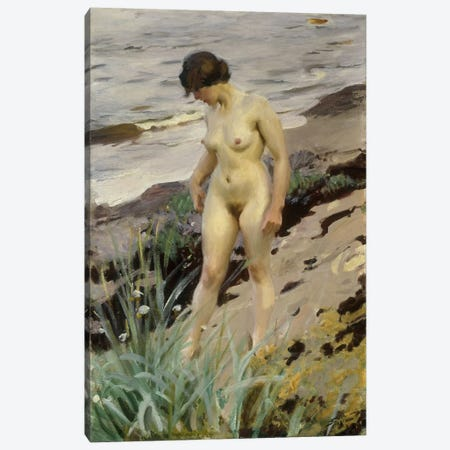 Sandhamn Study, 1914  Canvas Print #BMN5698} by Anders Leonard Zorn Canvas Artwork