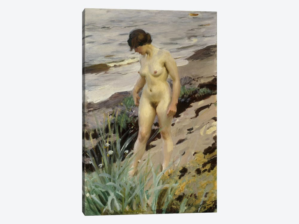 Sandhamn Study, 1914  by Anders Leonard Zorn 1-piece Canvas Wall Art