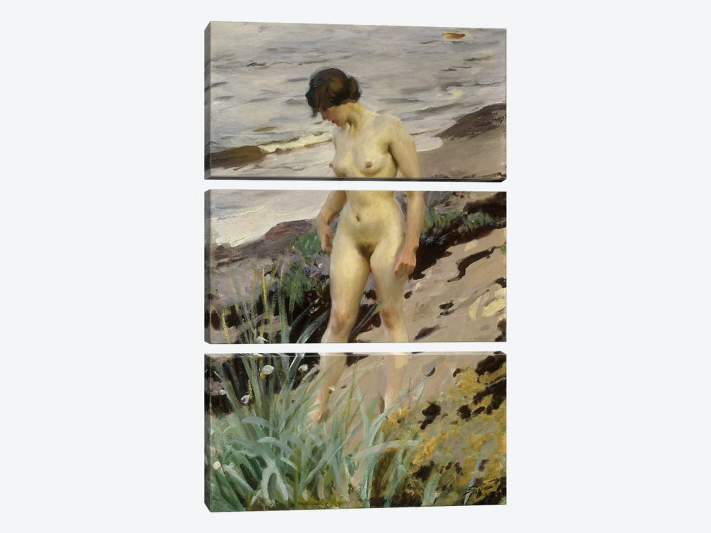 Sandhamn Study, 1914  by Anders Leonard Zorn 3-piece Canvas Artwork