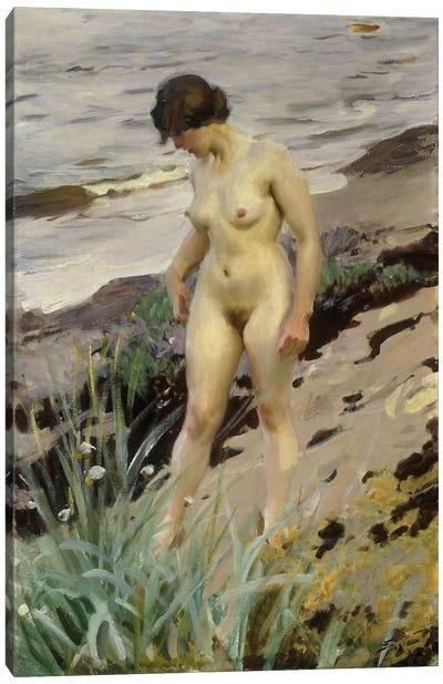 Sandhamn Study, 1914  Canvas Art Print