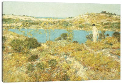 Dune Pool, 1912  Canvas Art Print