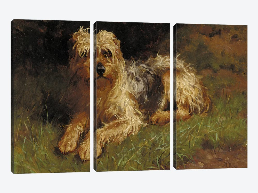 Soft Coated Wheaten Terrier  by Alfred Duke 3-piece Art Print