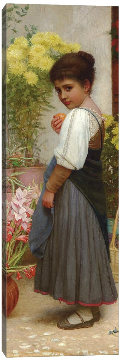 The Flower Merchant  Canvas Art Print
