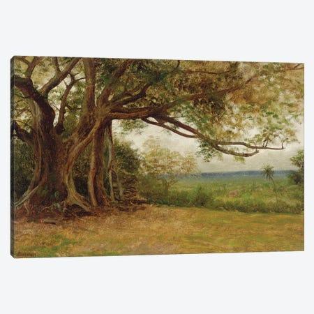 Study for 'The Landing of Columbus', 1892  Canvas Print #BMN5807} by Albert Bierstadt Canvas Wall Art