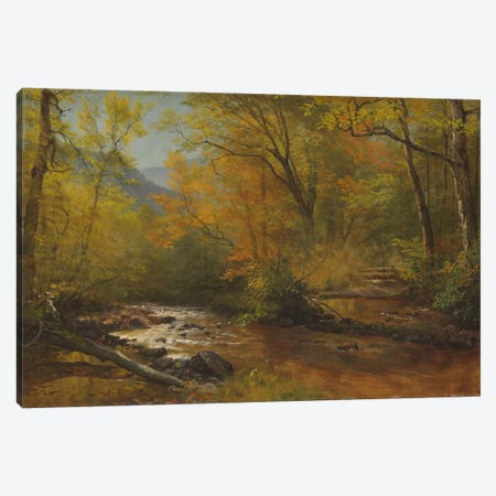Brook in woods  Canvas Print #BMN5810} by Albert Bierstadt Canvas Art