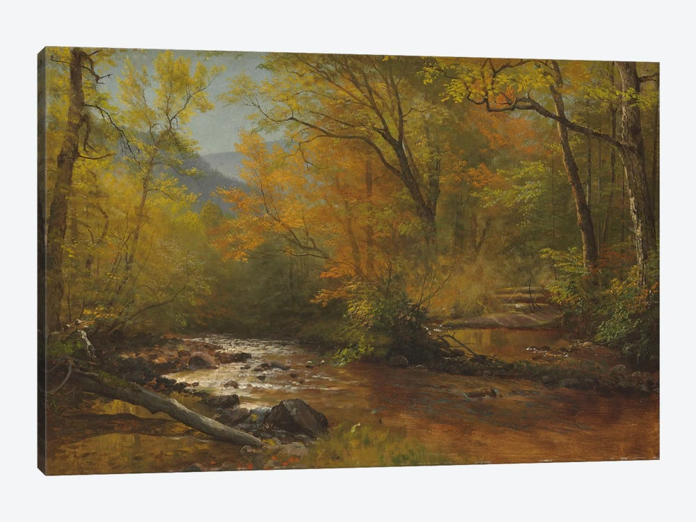 Brook in woods  by Albert Bierstadt 1-piece Art Print