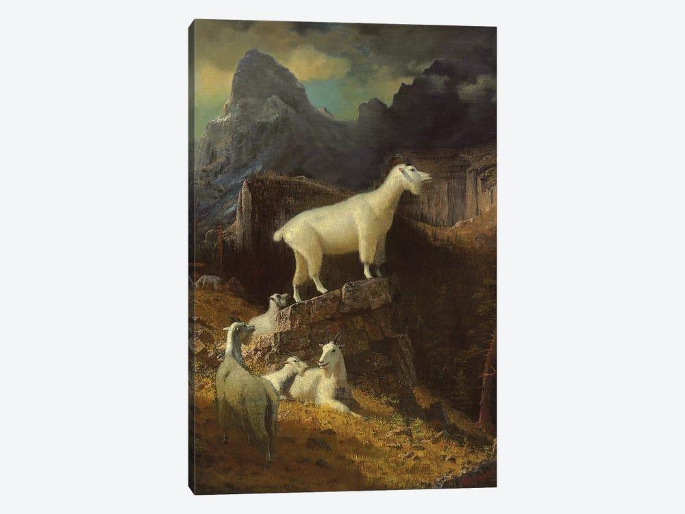 Rocky Mountain Goats, c.1885  by Albert Bierstadt 1-piece Art Print