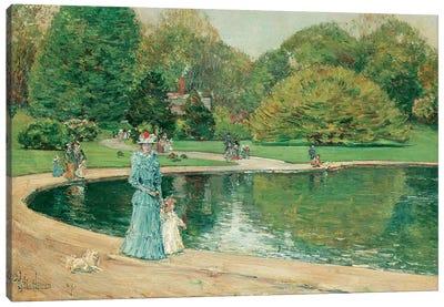 Central Park  Canvas Art Print
