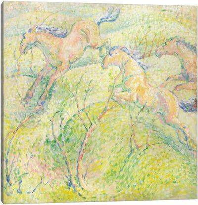 Jumping Horses, 1910  Canvas Art Print