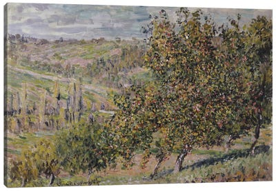 Apple Blossom, 1878  Canvas Art Print