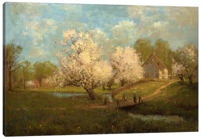Spring Blossoms  Canvas Print #BMN5846
